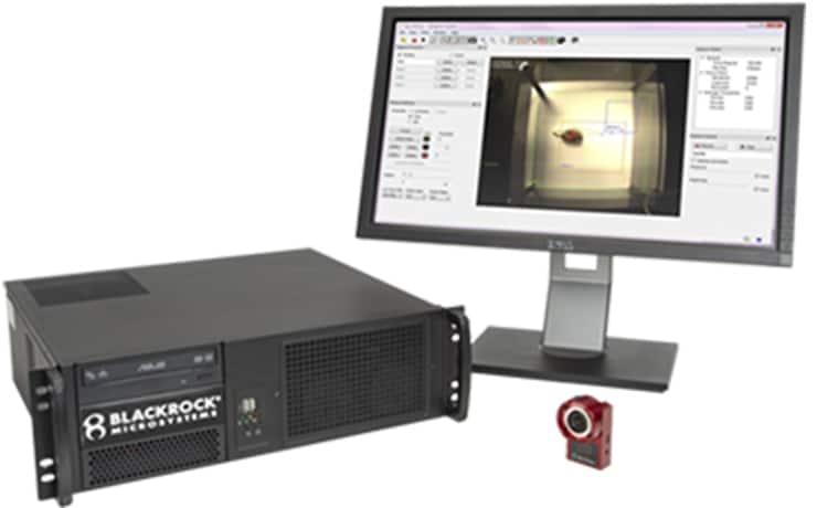 行動解析 - ビデオトラッキングシステム・ニューロモーティブ