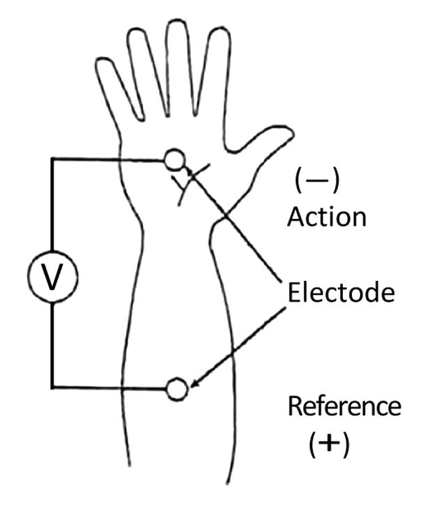 皮膚電気活動測定
